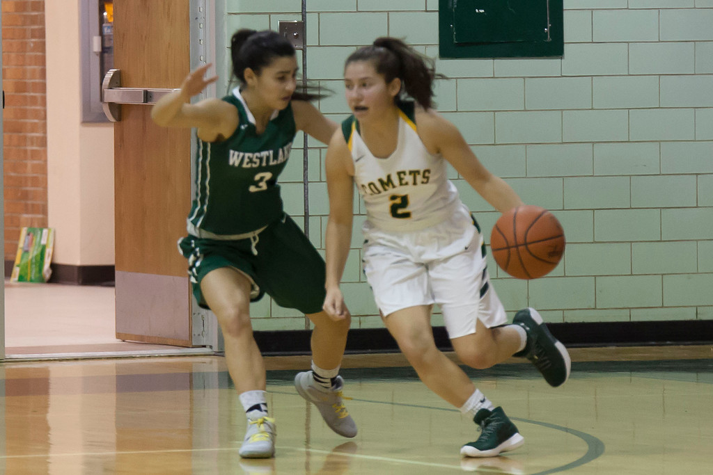 . Amherst\'s Audrey McConihe dribbles against Westlake\'s Natalina Nader. Jen Forbus -- The Morning Journal