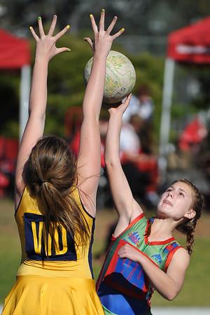 Blue Mountains Netball Association