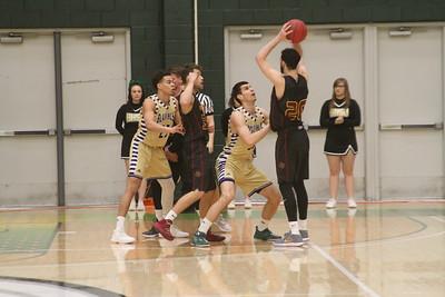 2-17-18 Colorado Mesa mens hoops @ BHSU