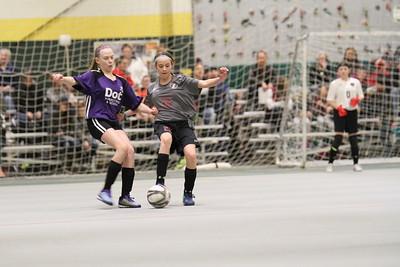 2-23-18 indoor soccer under-12 girls Sp vs Sturgis Wildfire