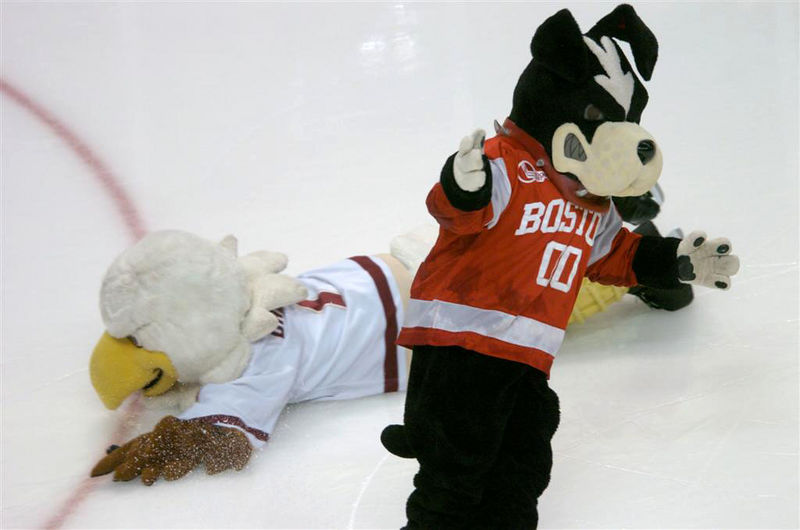 Which mascot is more likely to win the hearts and minds of the average Joe: the BC Eagles or the BU Terriers?