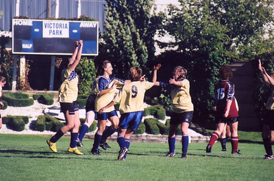 ADVIL TAKERS CELEBRATE A SILVER GOAL IN DIVISION II CUP FINAL