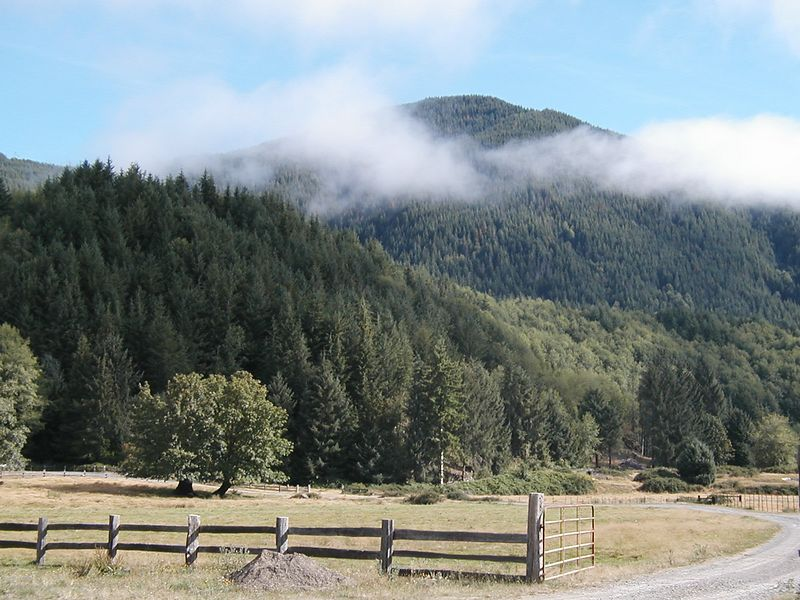 Aug. 18. FORKS IN THE MORNING AS THE FOG SUDDENLY CLEARED
