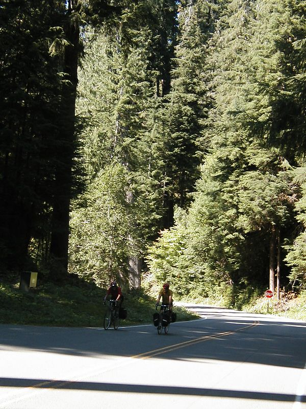 Aug. 16. SUSIE AND STOGS ON THE WAY TO SOL DUC HOT SPRINGS