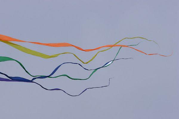 kites-06-17-05-2825