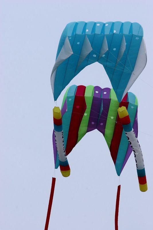 kites-06-17-05-2754