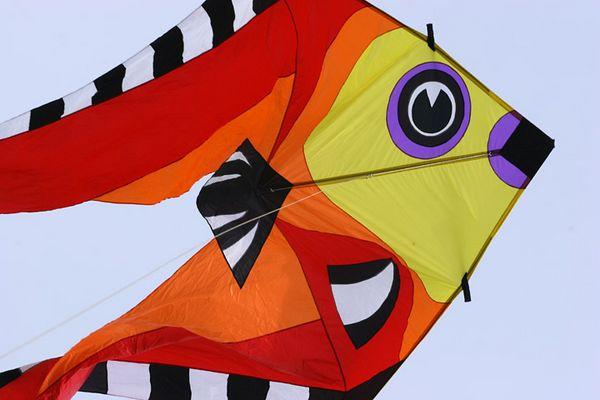 kites-06-17-05-2735