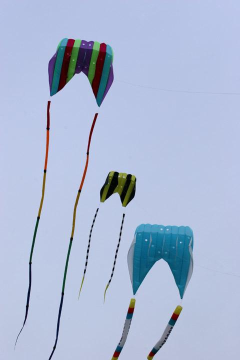 kites-06-17-05-2765