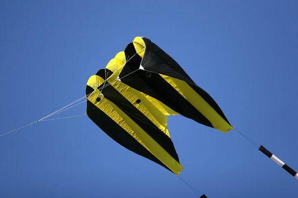 kites-05-08-9759