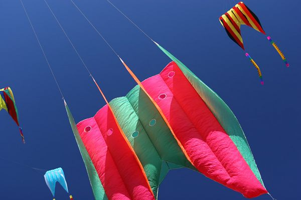 kites-05-08-9699