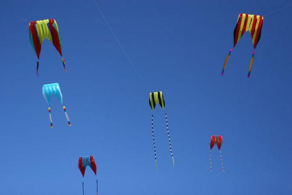 kites-05-08-9756