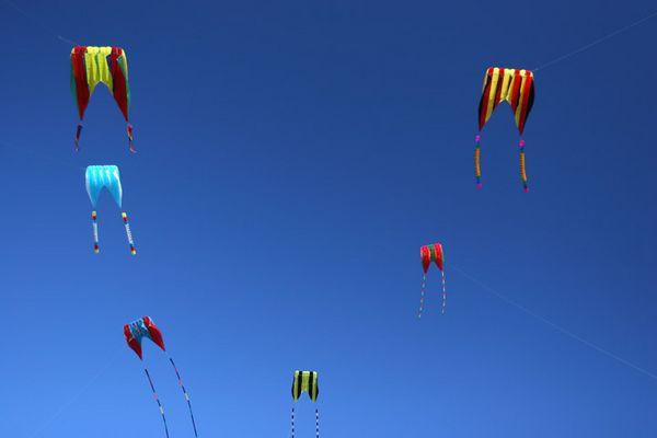 kites-05-08-9754