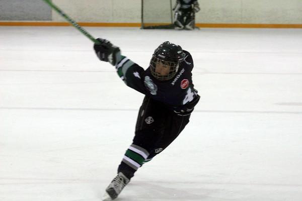 Seattle TBirds vs Vancouver Ice 91AA