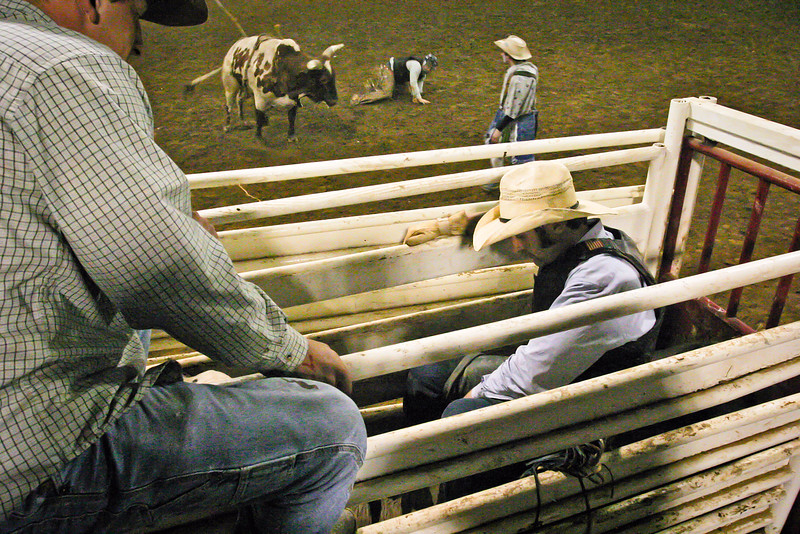 Into the Chute, Onto the Bull