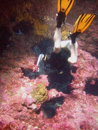 2007-11-27 Diving Lanai Cathedrals