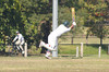 Chris Adams 14n.o.<br /> 4th XI v Burwood Uniting Canterbury<br /> A2 Synthetic Semi Final <br /> 2/3/2008