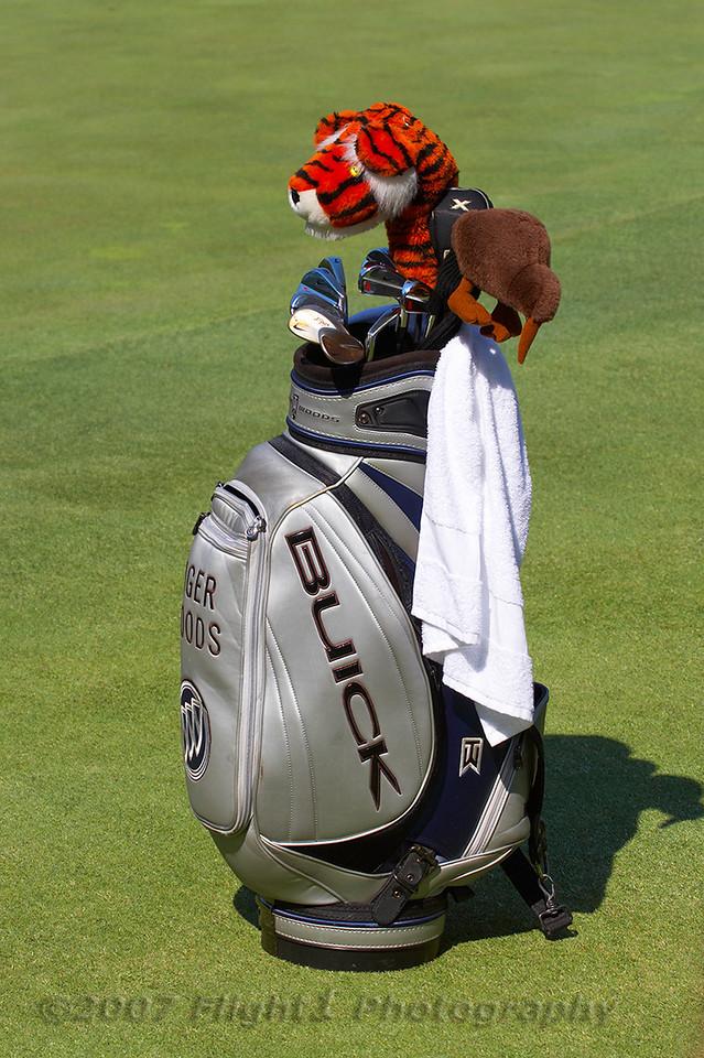 Tiger's bag