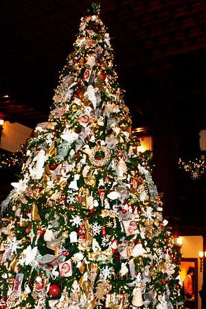 2008 December Hotel Del ride
