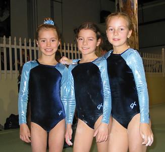 Hruska gymnastics winter meet.