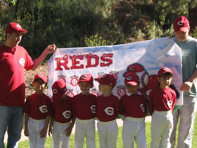 2008 Nareg Baseball League