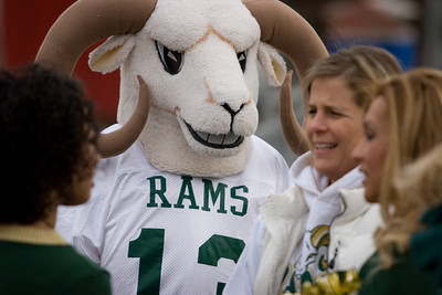 Rams_Rams-2434