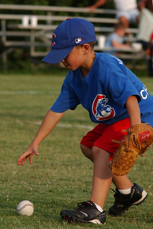 tball 101 cubs