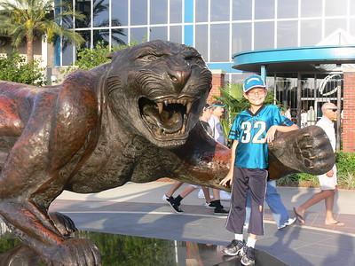 2009 Jaguars