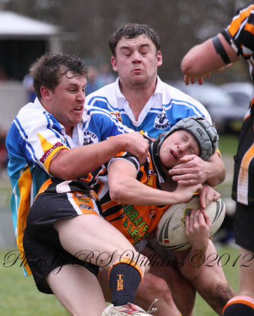 Shot from 2009 but watermarked incorrectly at 2012, Jonny Hill and James Blair deal with a tiger.