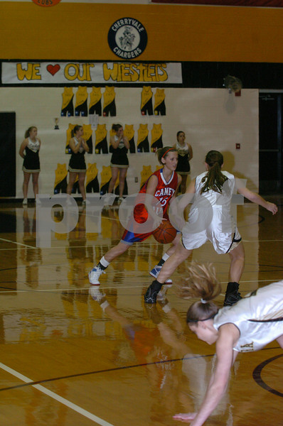 2009 wilson county classic basketball tourniment