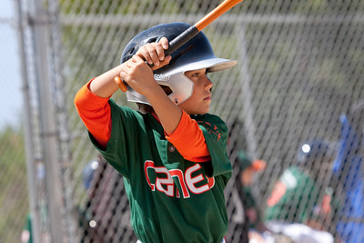20090404_Canes_Tigers_40