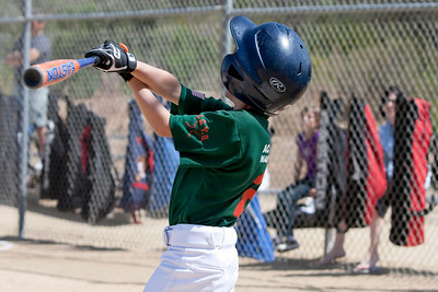 20090404_Canes_Tigers_02