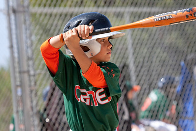 20090404_Canes_Tigers_39