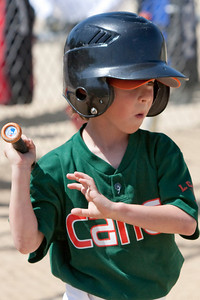 20090404_Canes_Tigers_16