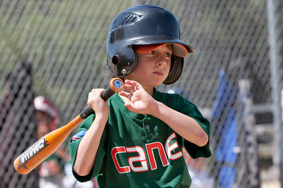 20090404_Canes_Tigers_17