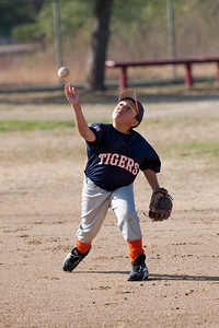 20090513_Tigers_Terps_27
