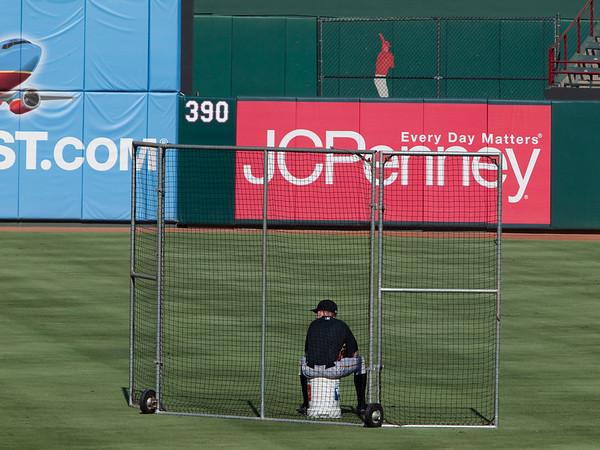 2010 Major League Baseball