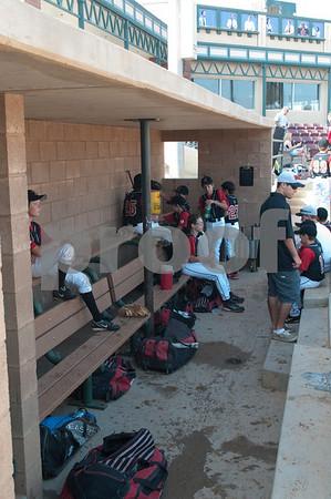 2010 Black Widow Baseball