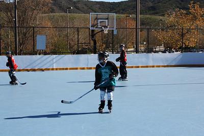 2010 Nareg Hockey
