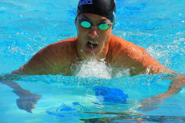 2010 Swimming