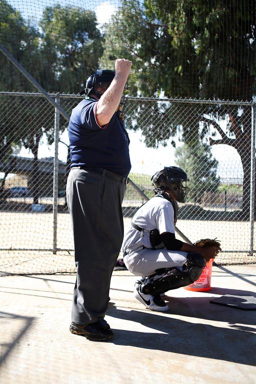 Umpire_022