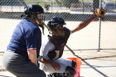 Umpire_024