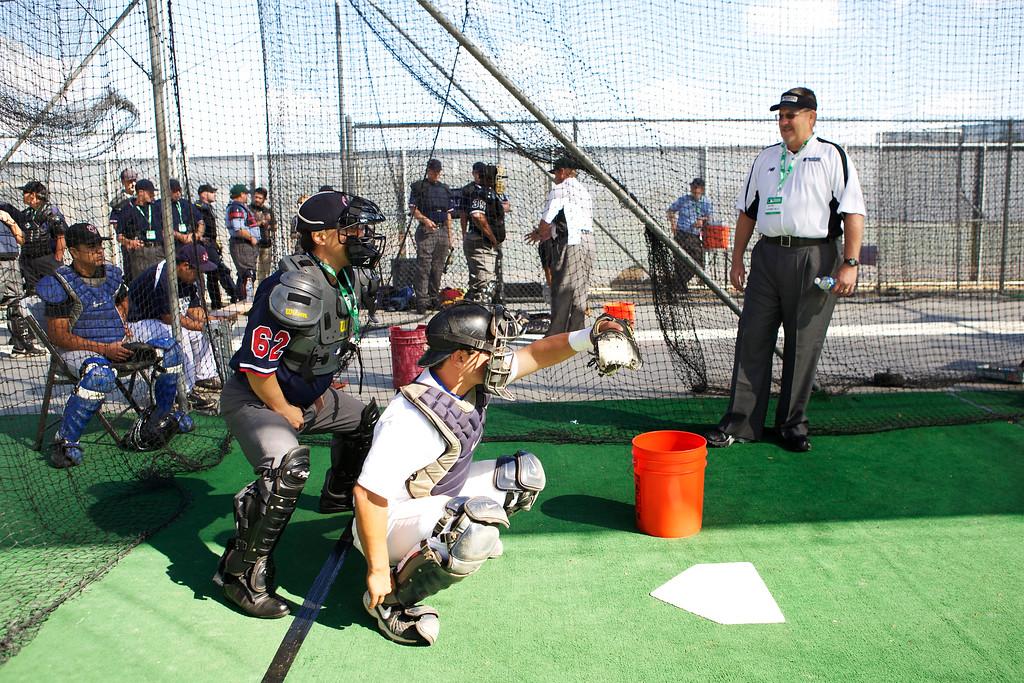Umpire_011