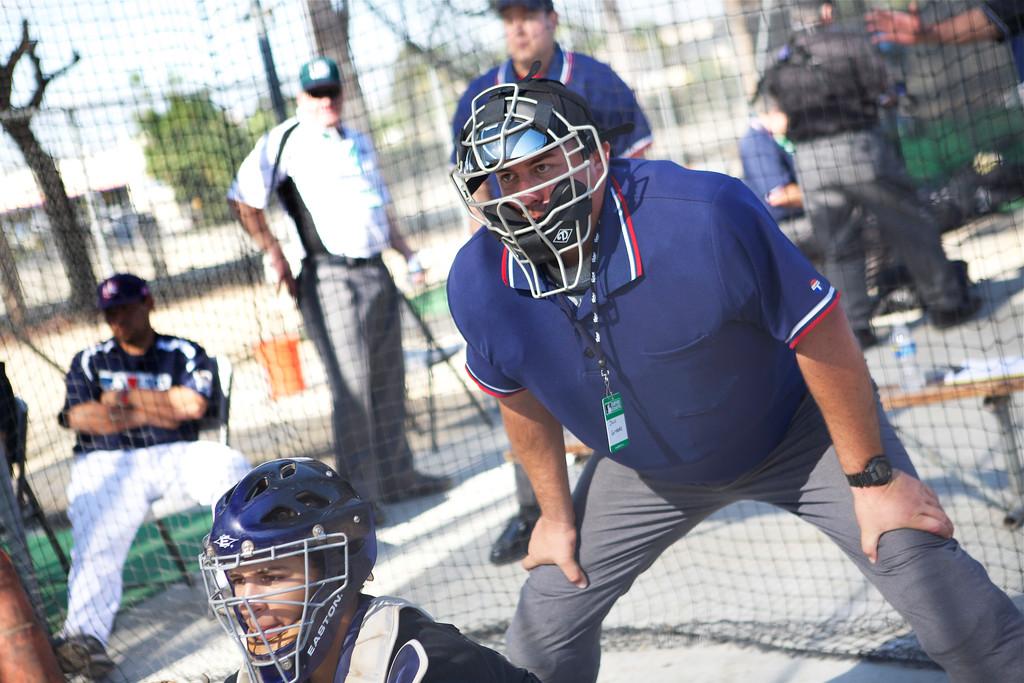 Umpire_041
