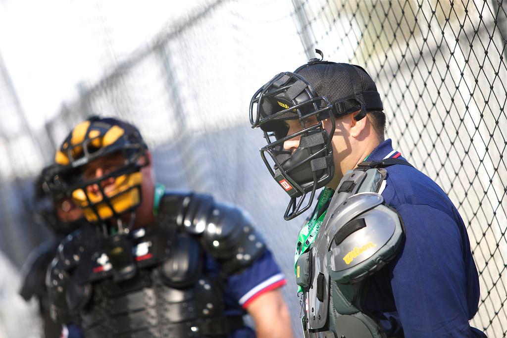 Umpire_032
