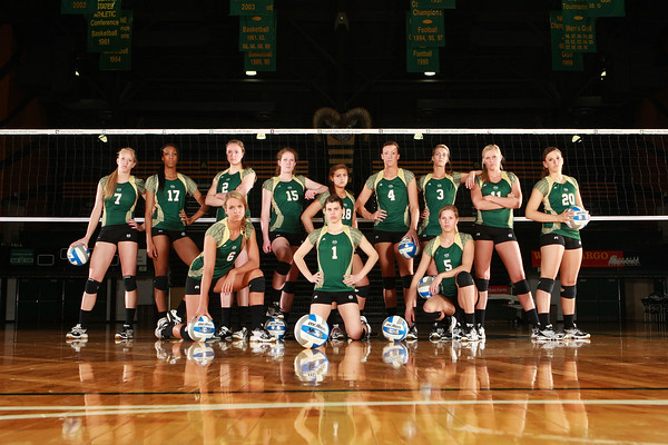 CSU Volleyball 2010-11 Selections