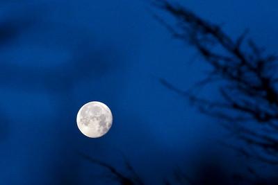 20100131_Full_Moon_3