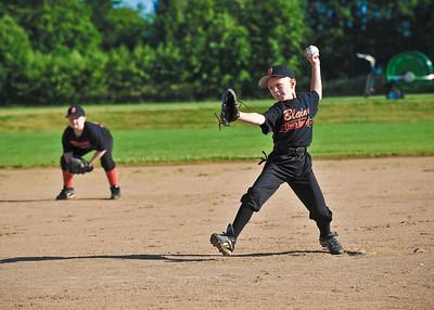 Blaine Minors Baseball, Summer League 2010