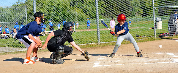 Blaine Minors Baseball, Summer League 2010
