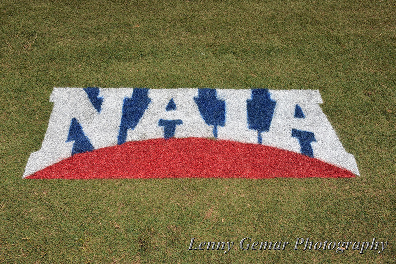 NAIA graffiti in the grass.