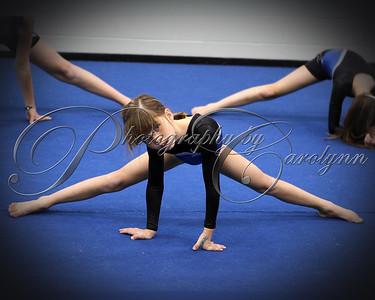 2011 Gymnastics
